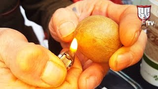 Bubble Hash, Live Resin & Terpenes: Pro Tips w/ Frenchy Cannoli - Smokers Guide TV California