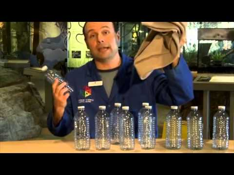Cool Science - Bottled water vs. Tap water