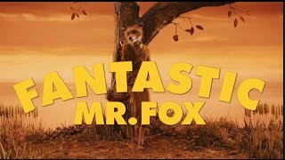 Fantastic Mr. Fox - Wes Anderson's Worldbuilding