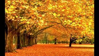 Нежданно осень наступила   песня на Жатву