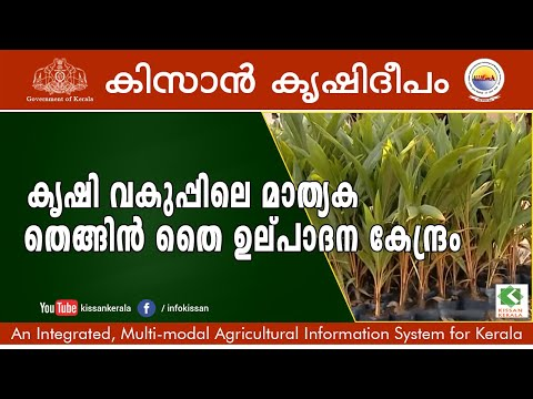 Documentary feature on Coconut Nursery, Department of Agriculture, Kazhakkuttam  episode- 631
