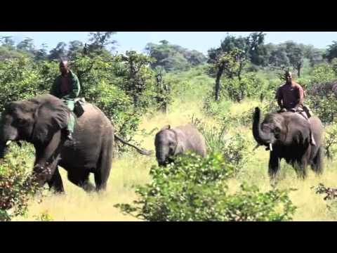 Africa Overland - Botswana #AfricaOverland