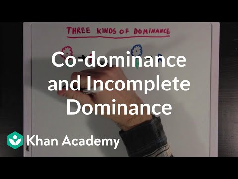 Co-dominance and Incomplete Dominance | Biomolecules | MCAT | Khan Academy