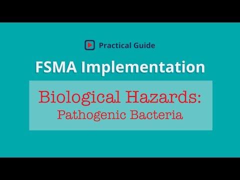 Food Safety Biological Hazards of Concern | Pathogenic Bacteria