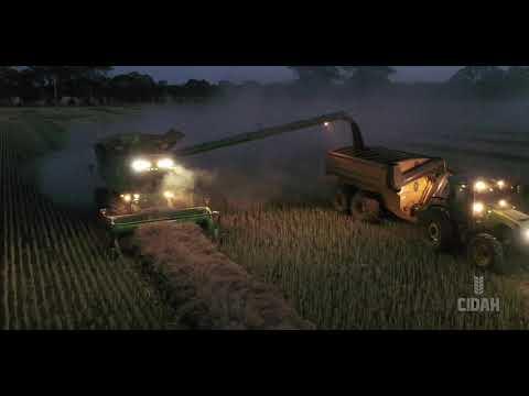 Agriculture Australia 2020