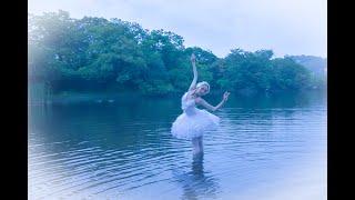 大地✖️バレエ 白鳥 8K映像『伊豆の大地を舞う』