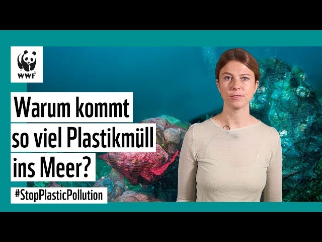 Warum kommt so viel Plastikmüll ins Meer? #StopPlasticPollution
