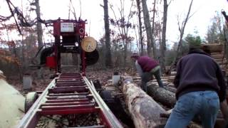 Milling Lumber from Reclaimed Poplar Logs - Bandsaw Mill