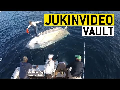 Cars, Planes, And Boats || JukinVideo Vault