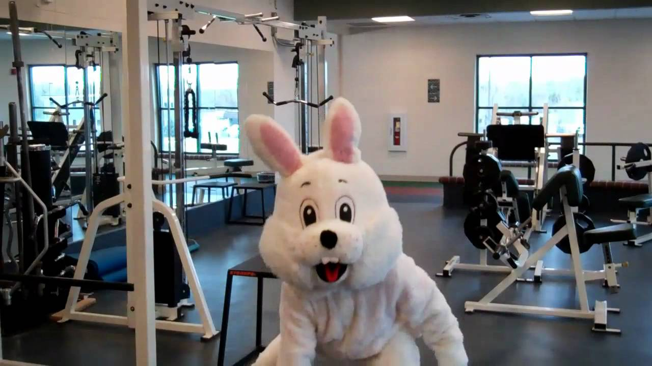 Easter Bunny Workout Youtube