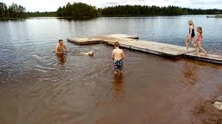 Ruby zwemt in Zweedse wateren (2)