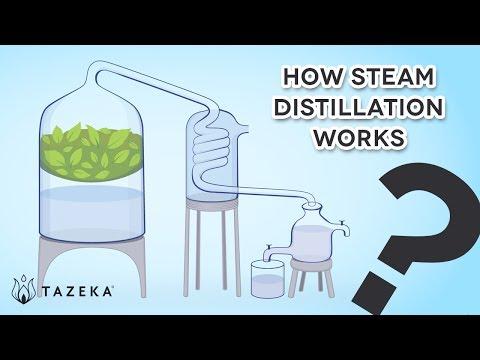 How Steam Distillation Works