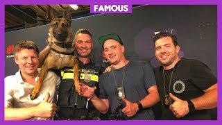 Politiehond Bumper is het beste dier op social media