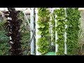 Vertical Farming, Hydroponics & Aquaponics Solutions for the Grand Solar Minimum (683)