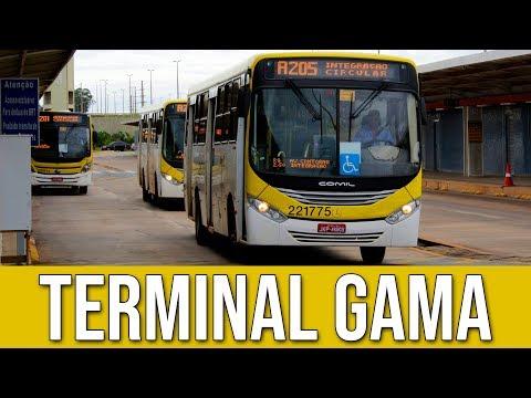 Movimentação De Ônibus #141 - Terminal Gama/DF