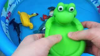 Узнайте имена морских животных и зоо животных Акула Видео Игрушки для детей