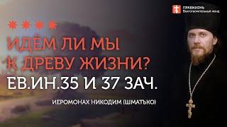 2020.05.22 Евангелие дня.Святитель Николай Чудотворец и путь жизни #проповедь иером Никодим(Шматько)