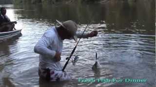 Vampire Fish grabs man's gut in Guyana