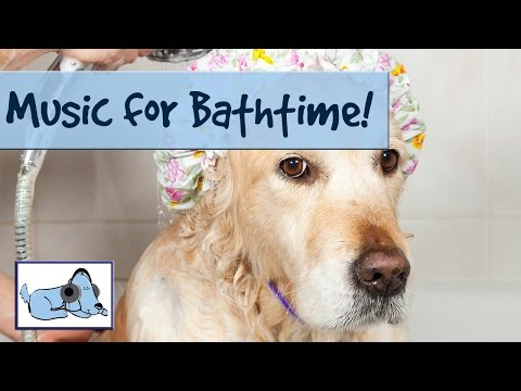 Music for Bathing Dogs. Keep your Dog Calm During a Bath with this Music! 🐶 #FLATNOSE07