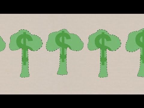 Forestry Economics: Optimal Rotation Age (Part 1)
