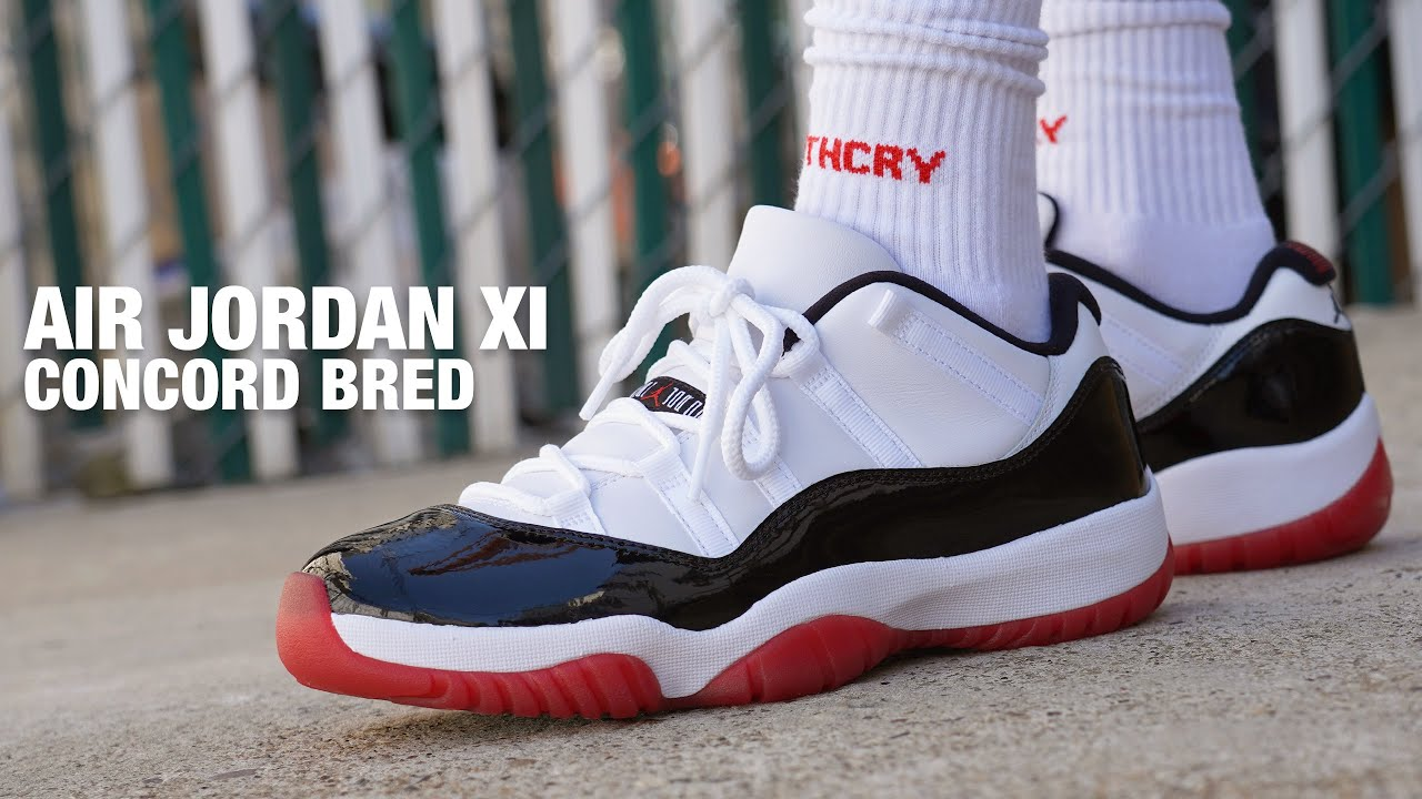Air Jordan 11 Low Concord Bred Review On Feet Youtube