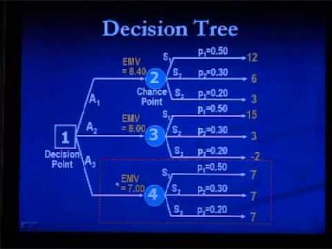 SEU: Course BUS 612 Lecture on Decision Theory