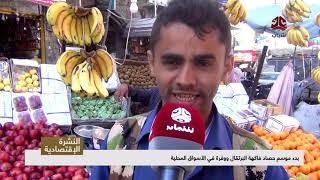 بدء موسم حصاد فاكهة البرتقال ووفرة في الأسواق المحلية  | تقرير يمن شباب
