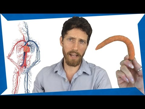 Erectile Dysfunction and what can be done. from YouTube · Duration:  14 minutes 46 seconds
