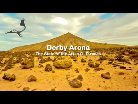 Tenerife Island awaiting you! - DISCOVER THE PARADISE AT THE UNIQUE DERBY ARONA FINAL RACE WEEK!