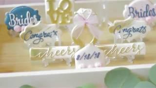 Wedding Recap Video in Delaware
