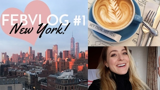 Hanging in NY: The Met, Beauty Buys & ALL The Food!    Febvlog 1