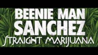 Beenie Man & Sanchez - Straight Marijuana (John John Productions) Nov 2015