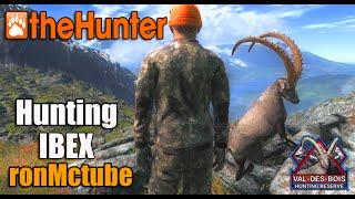 theHunter 2015 - Alpine Ibex on Val-des-Bois