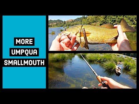 More Umpqua Smallmouth 6-30-19