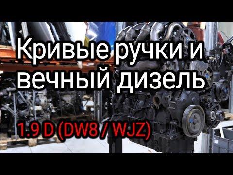 Фото к видео: Что стучит в надежном, как АК, дизеле 1.9D (DW8 / WJZ) от Peugeot и Citroёn?