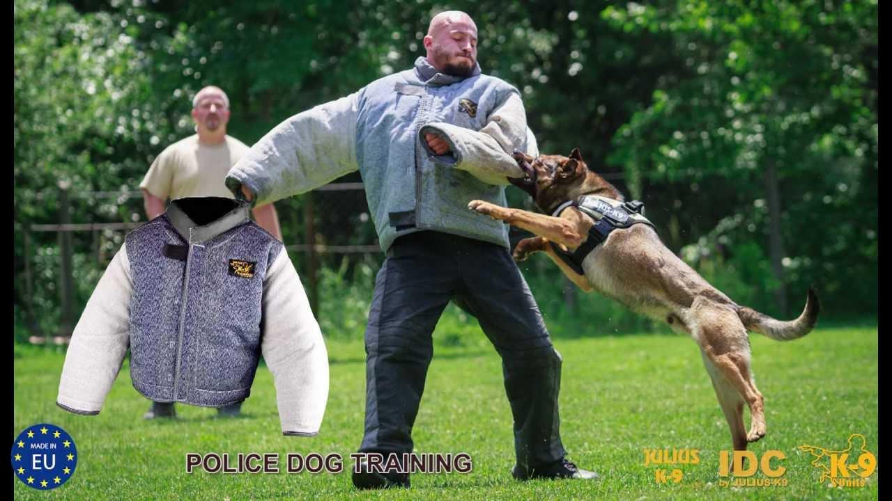 Training Police Dogs Uk