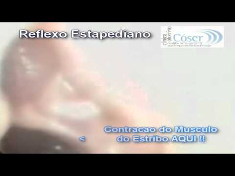 第18回外国人のための無料医療相談会と検診会(日本語語字幕) de YouTube · Duração:  2 minutos 15 segundos