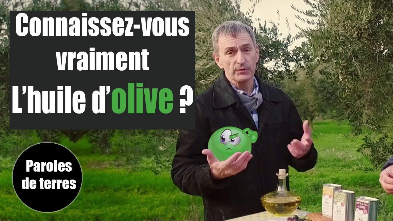 L'huile d'Olive, des goûts et des couleurs ! Paroles de Terres - Saison 3