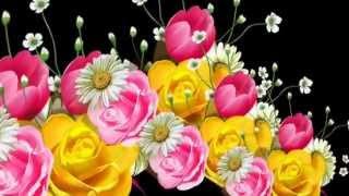 Футаж цветы Produce 31 Proshow Producer Free, слайд шоу, слайд программа