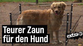 Realer Irrsinn: Hamburger Hundezaun | extra 3 | NDR