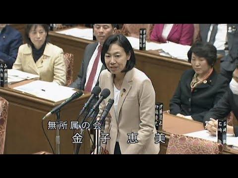 【衆院予算委】金子恵美議員、介護サービスの運営実態等について質問