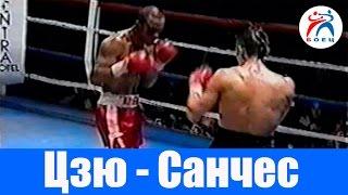 Костя Цзю против Педро Санчеса. Бокс. Бой №13.