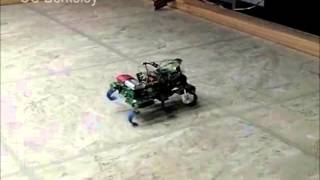 Precise Dynamic Turning of a 10 cm Legged Robot on a Low Friction Surface Using a Tail