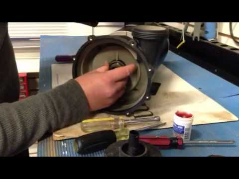 How To Replace A Quot Reverse Quot Shaft Seal On A Spa Motor Youtube