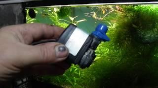 Экологический баланс в аквариуме без растений.