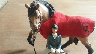 L' arrivo di Thunderbolt- cavalli Schleich- scuderia G.R.H.!!
