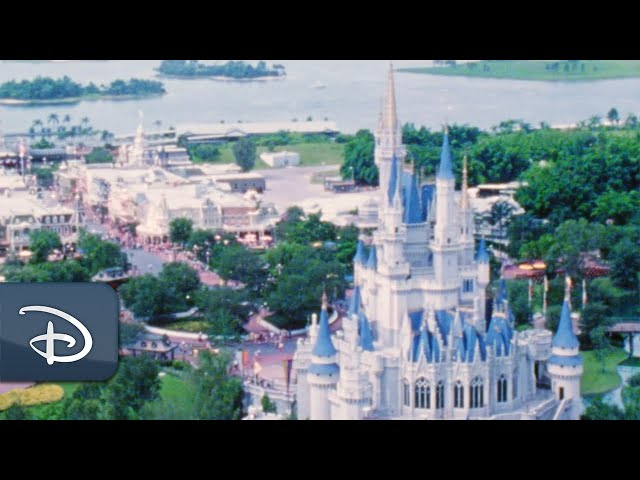 Discover What It Took to Bring Walt Disney World Resort to Life!