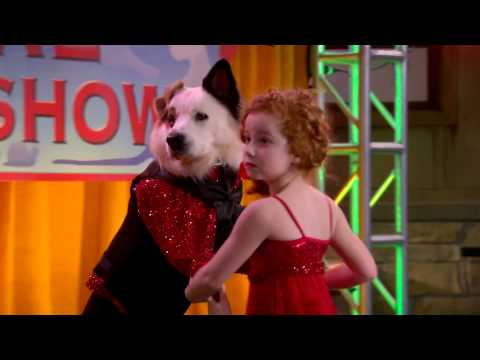 Dog With A Blog - The Talent Show