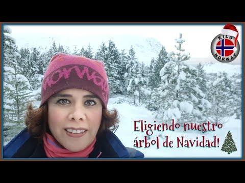 Eligiendo Nuestro árbol De NAVIDAD 🎄Kilo Norway / Mexicana En Noruega | Vlog 91