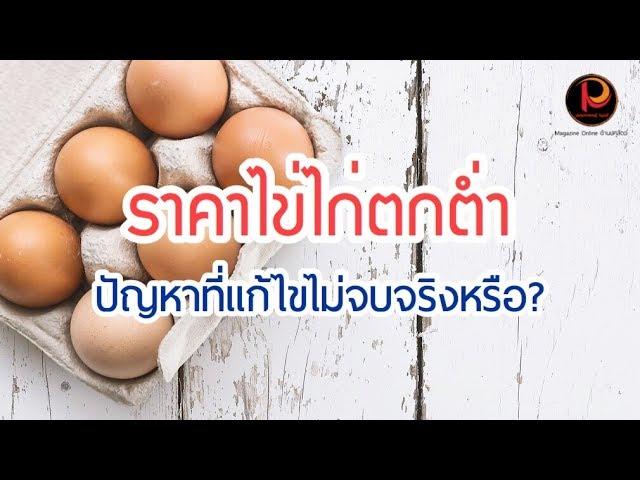 ราคาไข่ตกต่ำ ปัญหาที่แก้ไม่จบ!!!